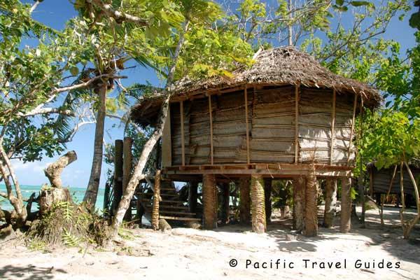 Samoan from australia - 2 9